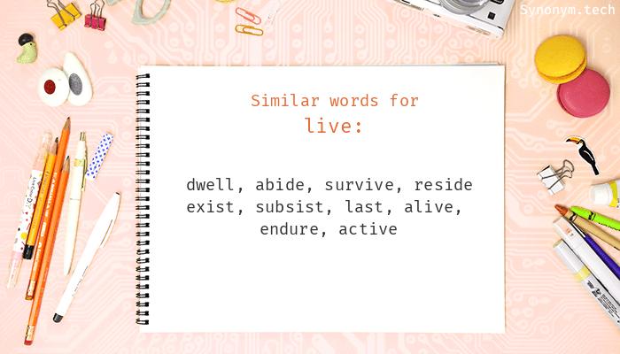 Synonym Live