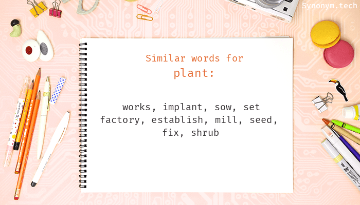 Plant Synonyms