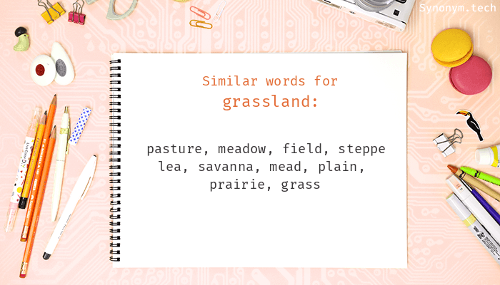 Grassland Synonyms