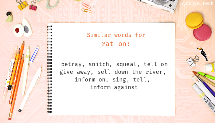 Rat on Synonyms